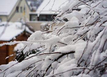 scoli inchise februarie 2018 - sfatulparintilor.ro - pixabay_com - winter-3126589_1920