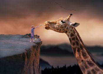 zodii manipulatoare - sfatulparintilor.ro - pixabay_com giraffe-1959110