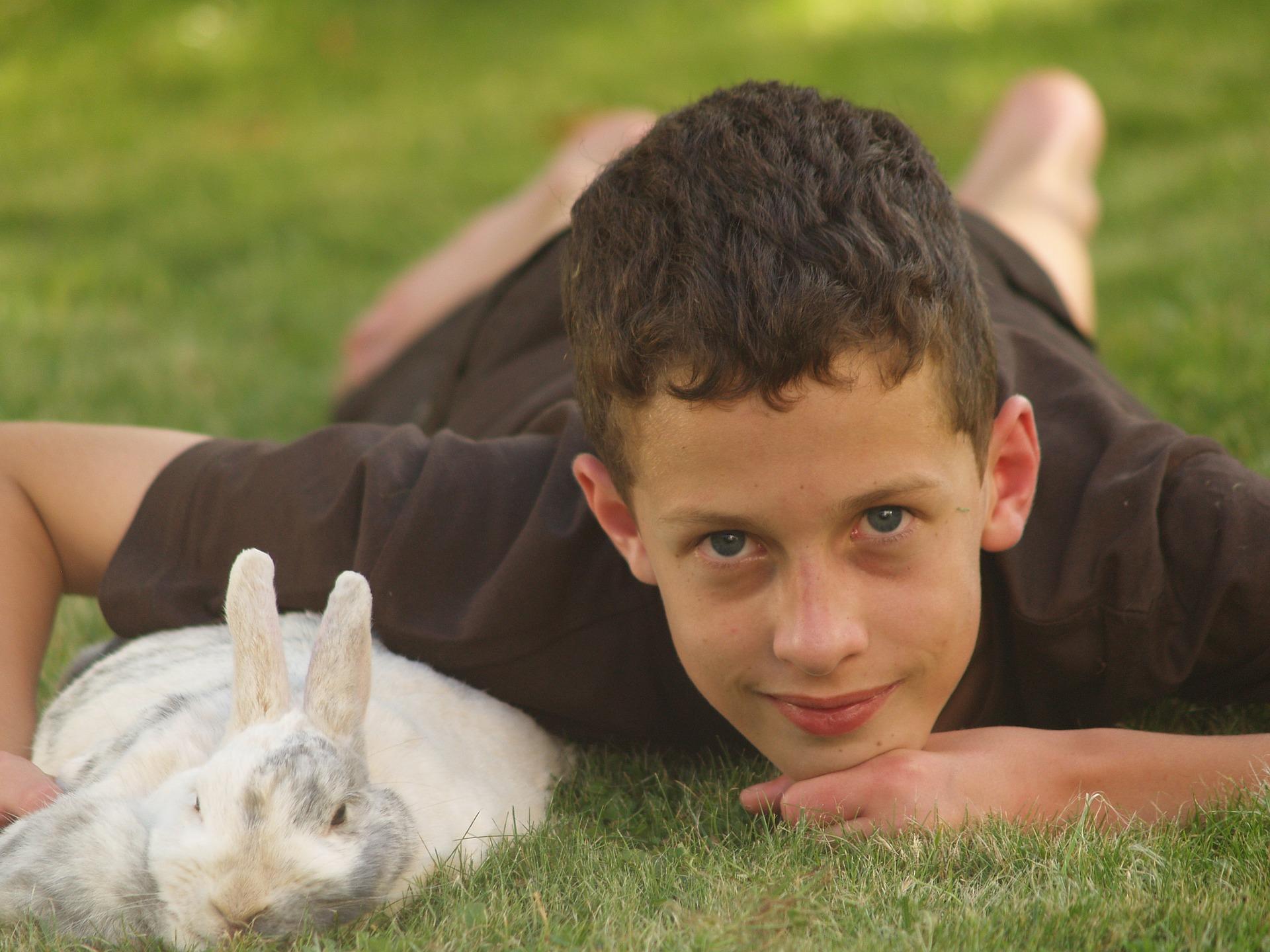 Alergie la copii - sfatulparintilor.ro - pixabay_com- pets-2493396_1920