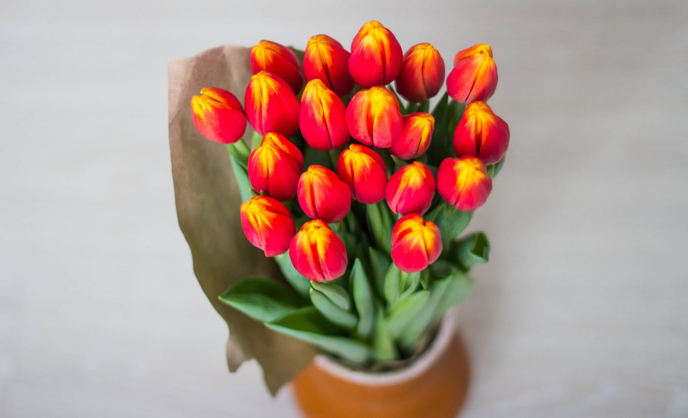 Felicitari De 8 Martie Pentru Mame Si Soacre 50 De Mesaje