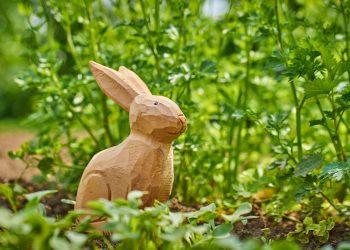 Horoscop chinezesc Anul Iepurelui - sfatulparintilor.ro - pixabay_com - garden-2337208_1920