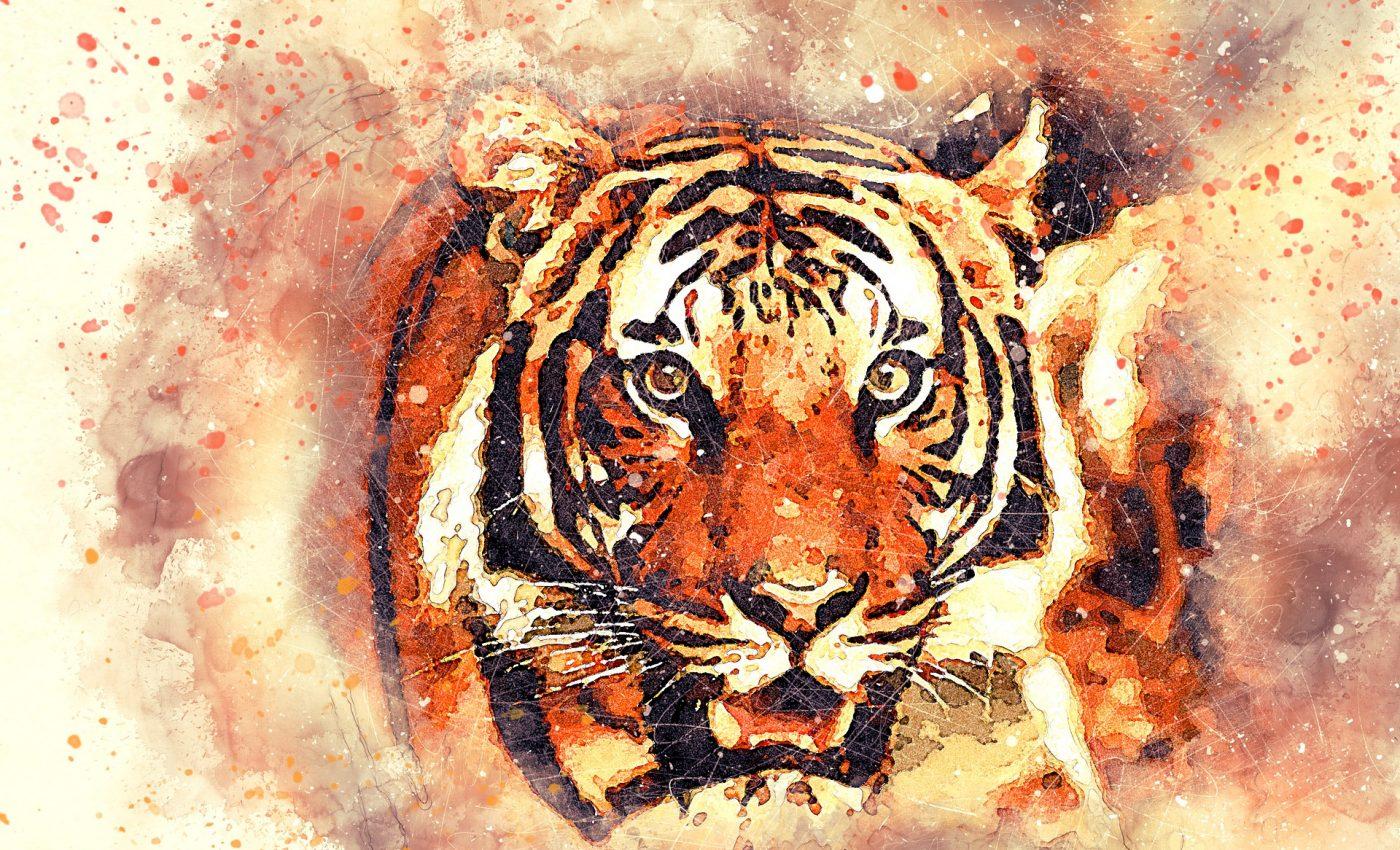 Horoscop chinezesc Anul Tigrului - sfatulparintilor.ro - pixabay_com - tiger-2719614_1920