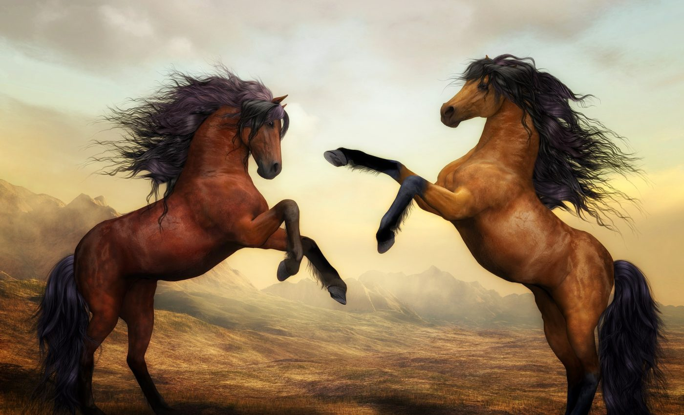 ce inseamna cand visezi cai - sfatulparintilor.ro - pixabay_com - horses-2904536_1920
