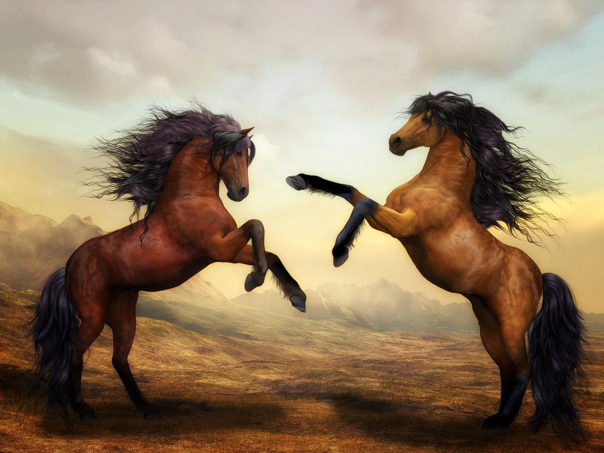 Ce inseamna cand visezi cai. Semnificatii in functie de culoare. Interpretarile lui Freud si Jung - Sfatulparintilor.ro