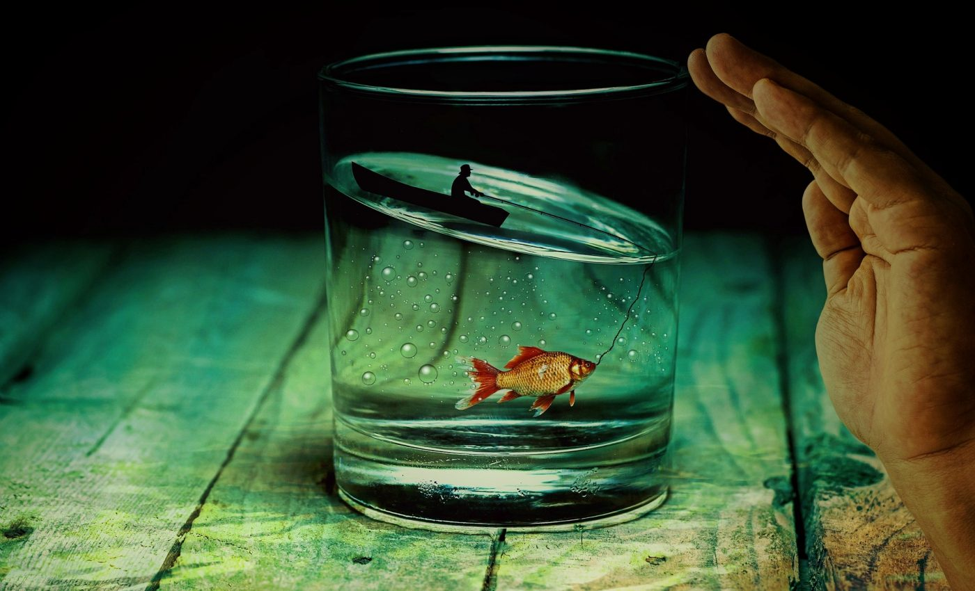 ce inseamna cand visezi peste - sfatulparintilor.ro - pixabay_com - water-glass-2542790_1920