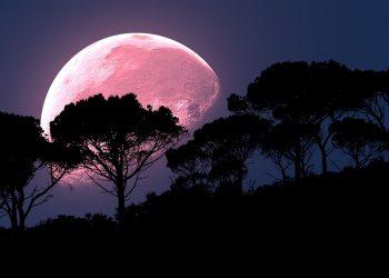 horoscop weekend - sfatulparintilor.ro - pixabay_com - moon-2238023