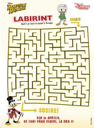 rezolva labirintul