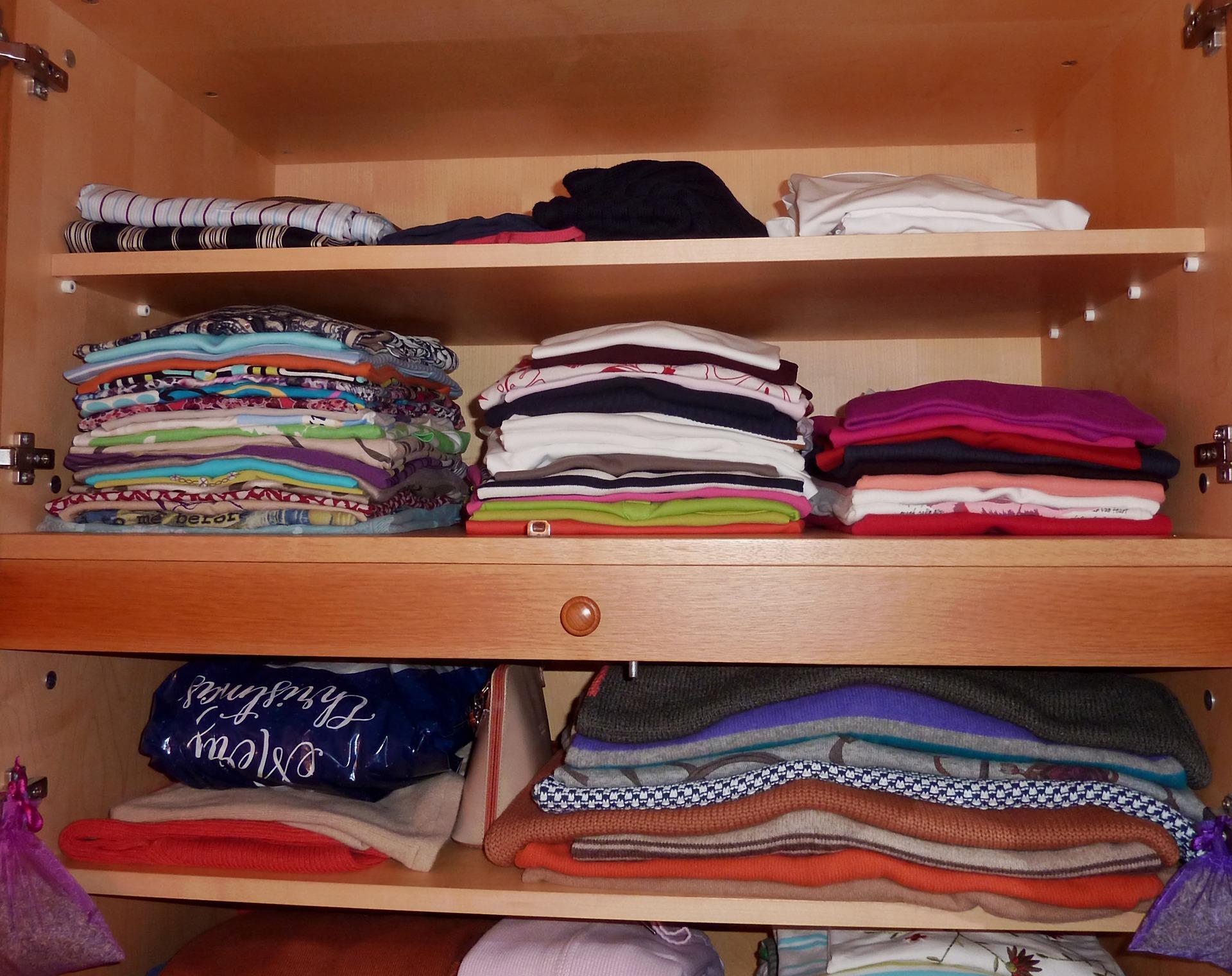 sa scapi de molii - sfatulparintilor.ro - pixabay_com - wardrobe-3371665_1920