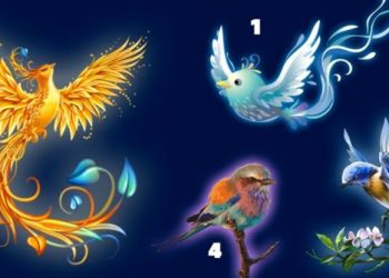Alege o pasare - birdat-800x416