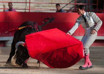 zodia taur - sfatulparintilor.ro - pixabay_com - bullfight-2012796_1920