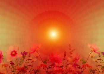Horoscop lunar IUNIE 2018 - sfatulparintilor.ro - pixabay_com - meditation-3265849_1920