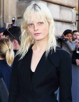 vopsea de par - blond rece