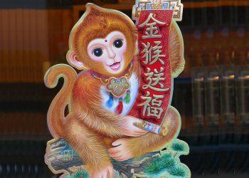 Horoscop chinezesc Anul Maimutei - sfatulparintilor.ro - pixabay-com - vietnam-1262814_1920