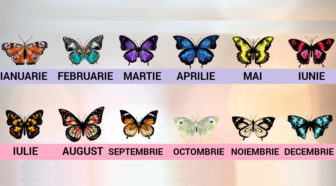 fluturi luna nasterii - sfatulparintilor.ro - What-Your-Birth-Month-Butterfly-Says-About-Your-Personality