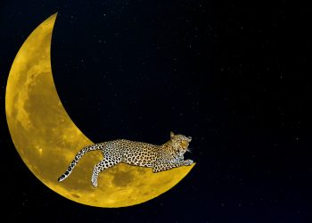 horoscop weekend - sfatulparintilor.ro - pixabay_com - fantasy-3066998_1920