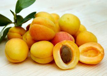 samburi de caise - sfatulparintilor.ro - pixabay_com - apricots-2523272_1920