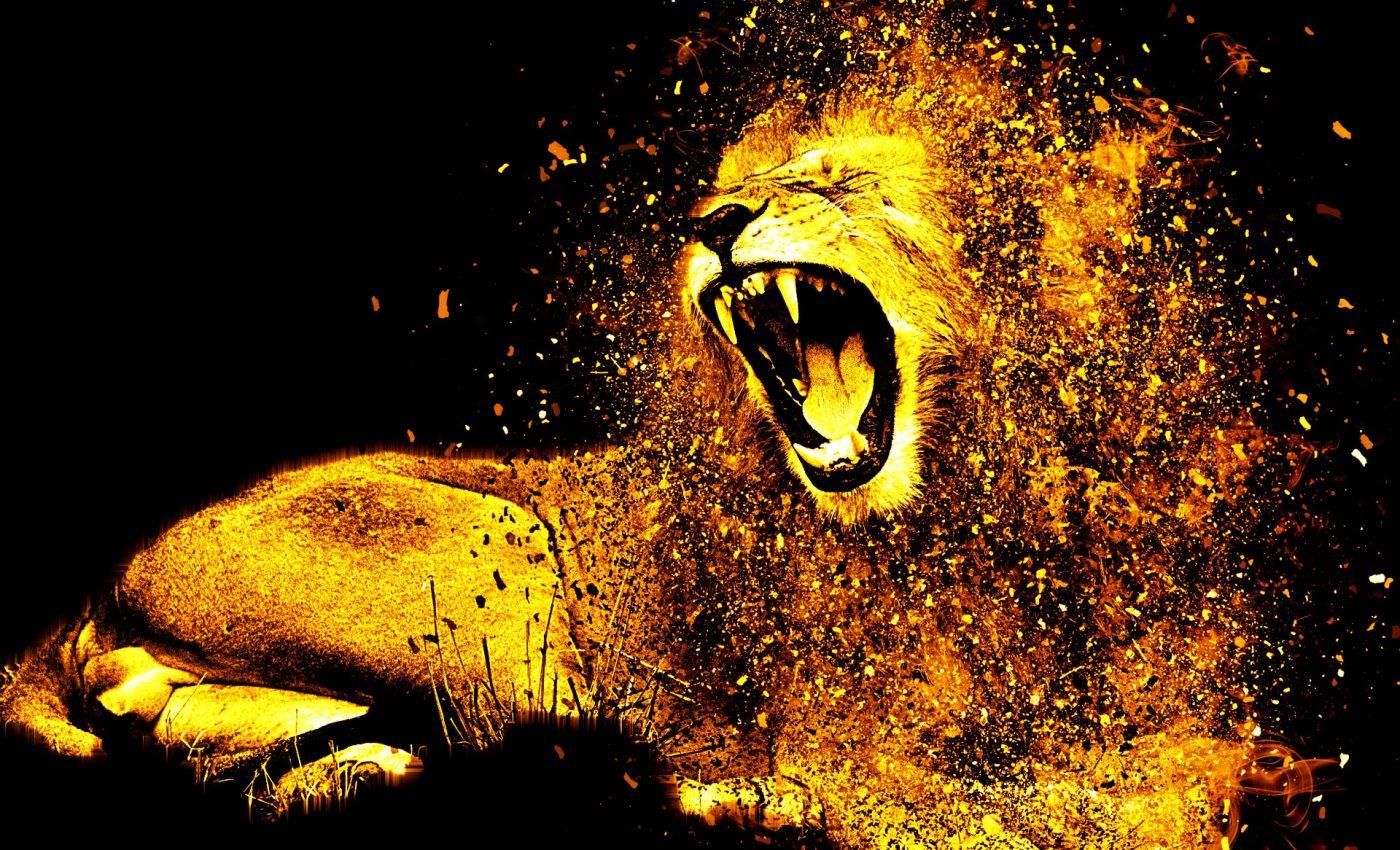 zodia leului - sfatulparintilor.ro - pixabay_com - lion-1987846_1920