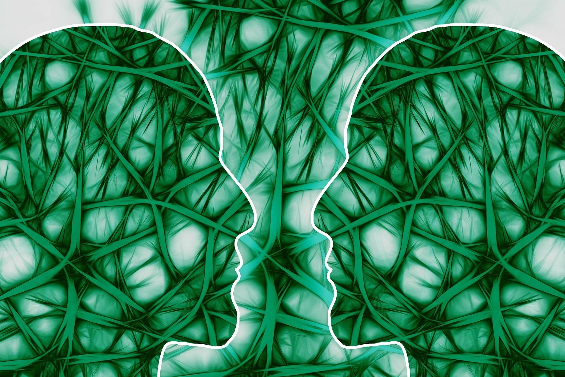 creierul uman - sfatulparintilor.ro - pixabay_com- neural-pathways-221719_1920