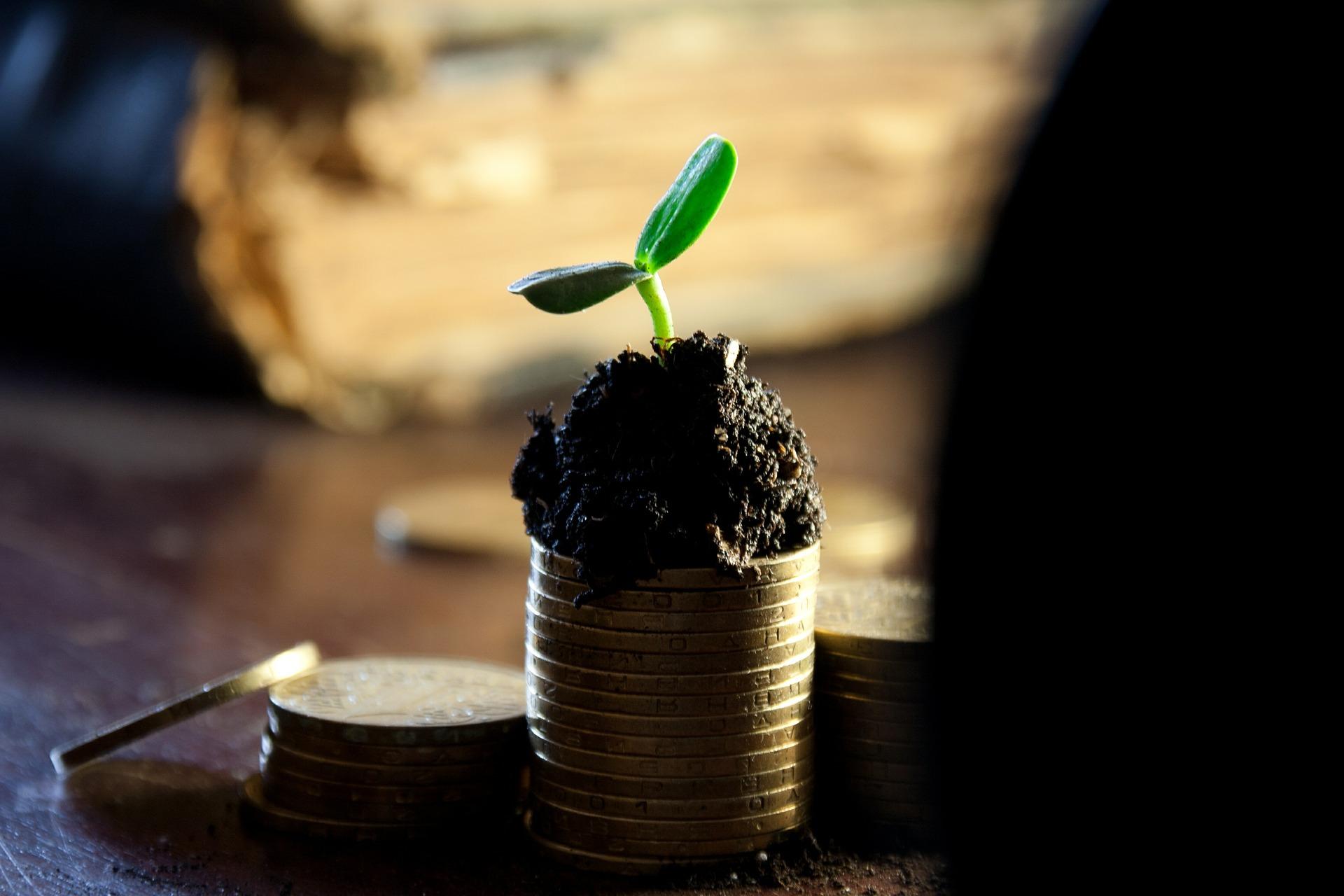 horoscop saptamanal bani -sfatulparintilor.ro- pixabay_com- money-549161_1920