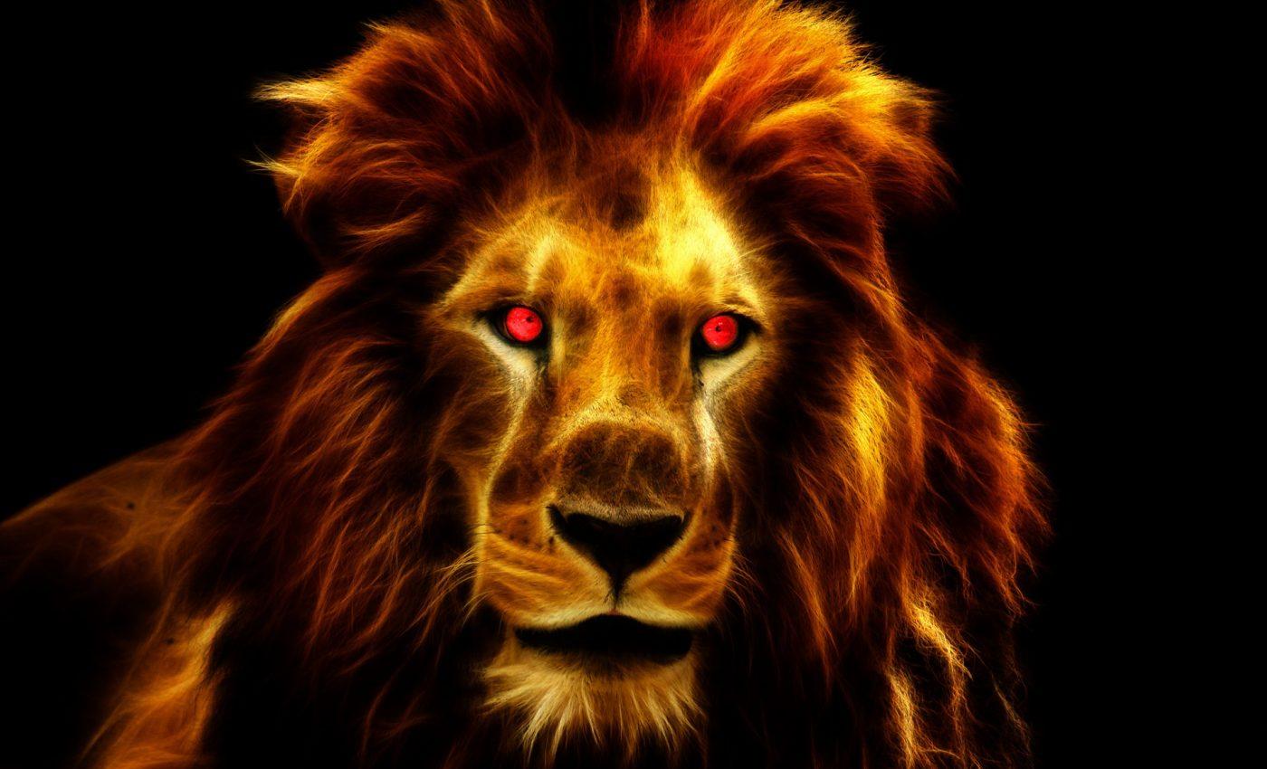 portalul leului - sfatulparintilor.ro - pixabay_com - lion-1237441_1920