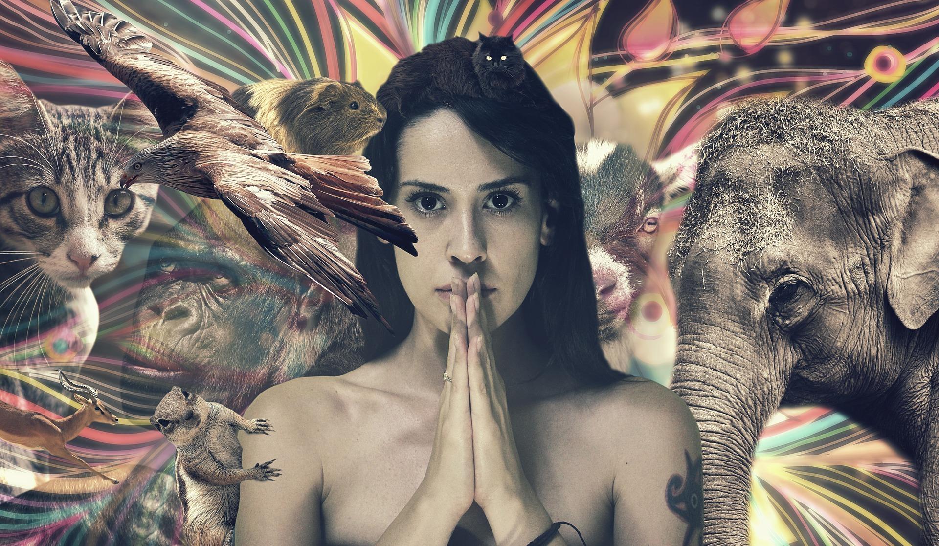 animal spiritual data nasterii