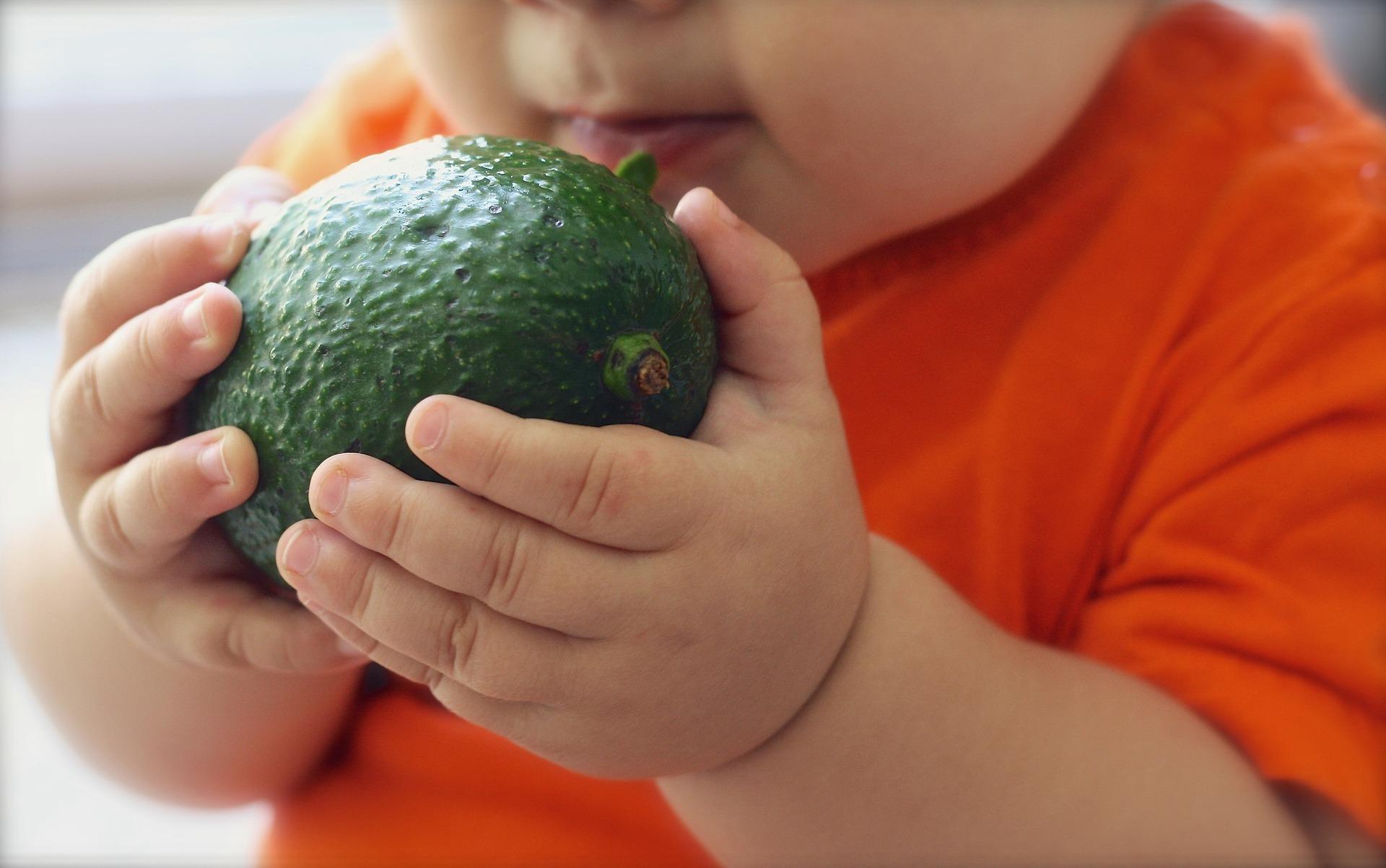 cand e cel mai bine sa hranesti copilul - sfatulparintilor.ro - pixabay-com - avocado-1476493_1920