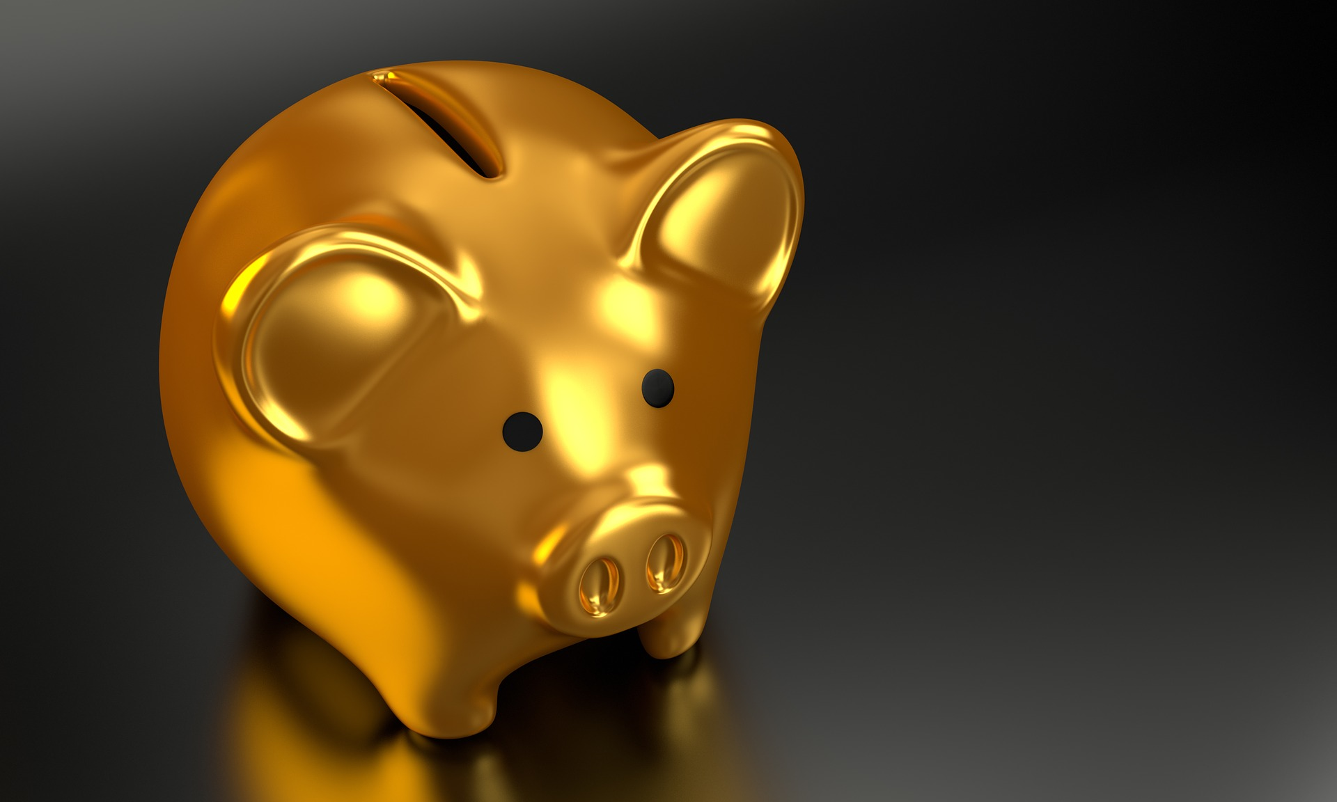 cum sa faci bani zodie - sfatulparintilor.ro - pixabay_com - piggy-bank-2889046_1920