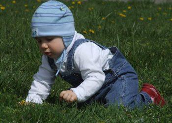 Cum sa iti ajuti bebelusul in dezvoltare - SFATULPARINTILOR.RO - PIXABAY_COM - toddler-1083863_1920