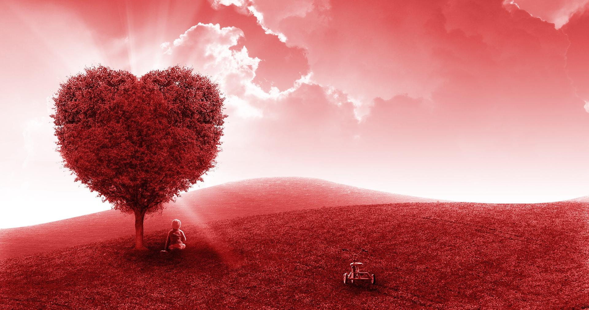 din inima - sfatulparintilor.ro = pixabay-com- landscape-1444023_1920