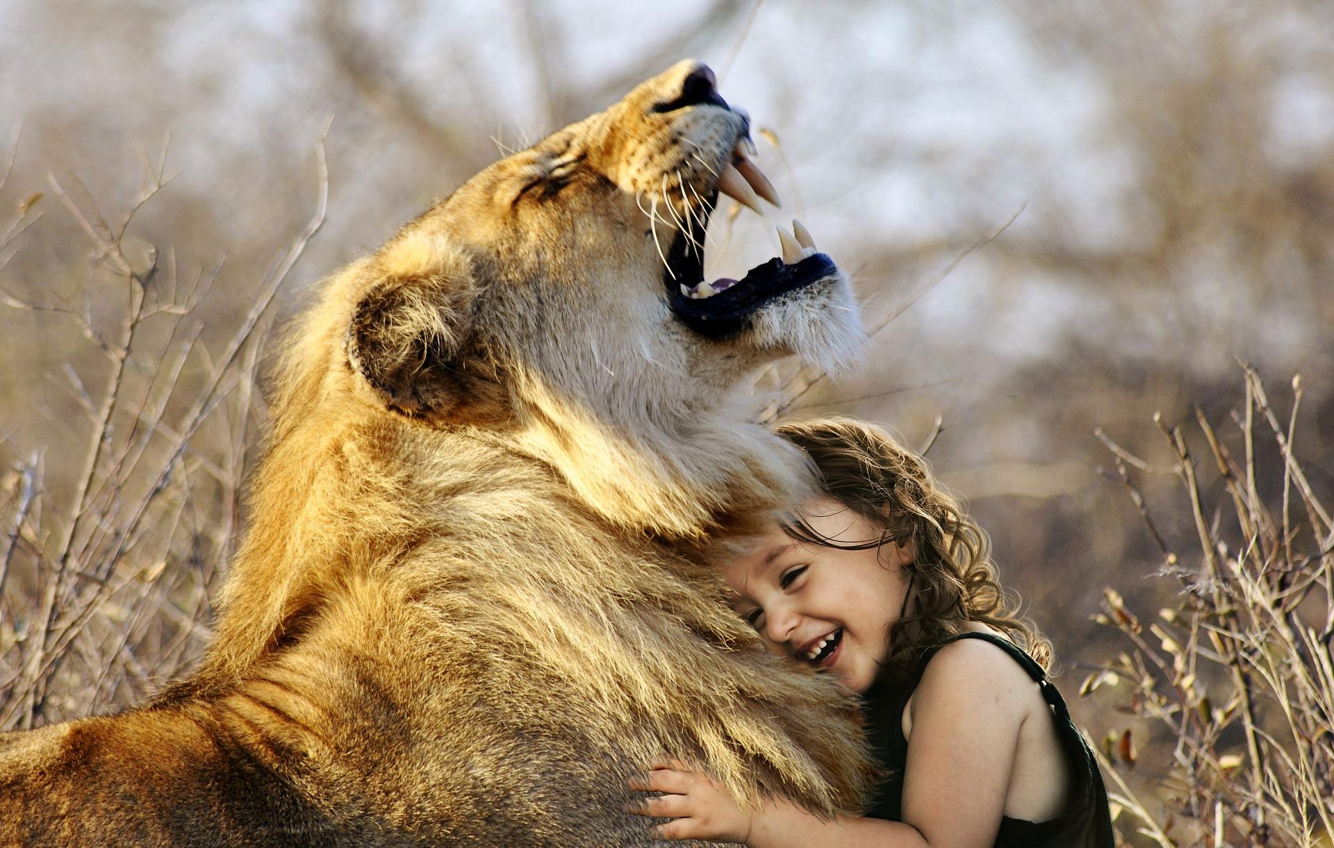 fiica cu incredere de sine - sfatulparintilor.ro - pixabay_com - lion-3012515_1920