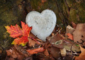 citate despre iubire - sfatulparintilor.ro - pixabay_com - heart-3764307_1920