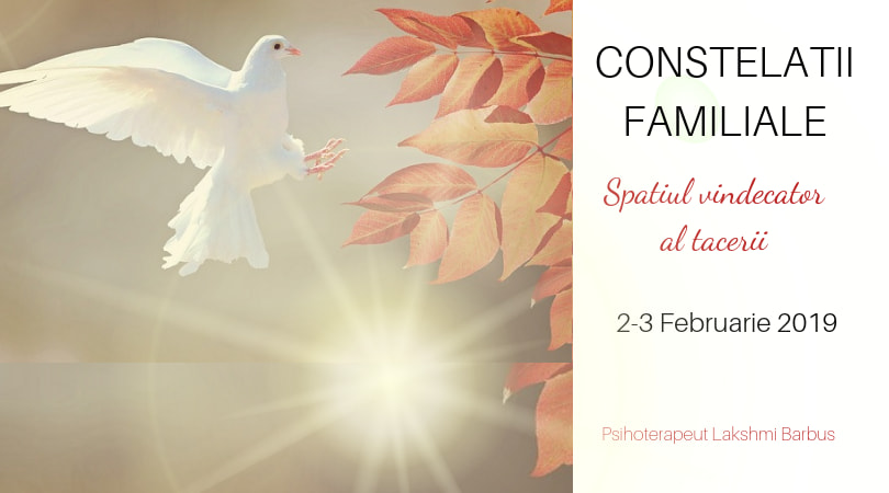 Workshop Constelatii Familiale