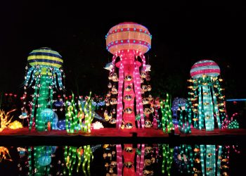 anul nou chinezesc - sfatulparintilor.ro - pixabay_com - chinese-new-year-2190543_1920