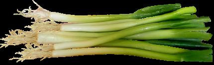 Saptamana 23 de sarcina - sfatulparintilor.ro - pixabay-com - spring-onions-3678921_1920