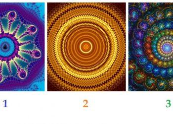TEST alege un fractal
