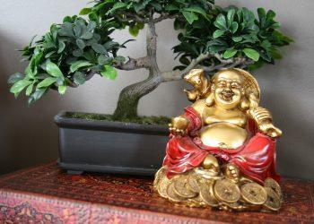 feng shui 2019 pentru bani - sfatulparintilor.ro - pixabay_com - fengshui-668224_1920