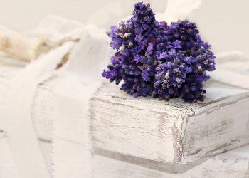 Lavanda - sfatulparintilor.ro - pixabay_com - lavender-2430847_1920