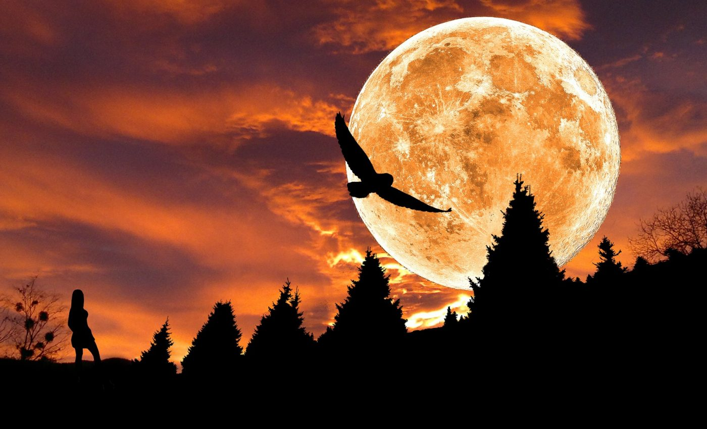 luna plina in scopion 2019