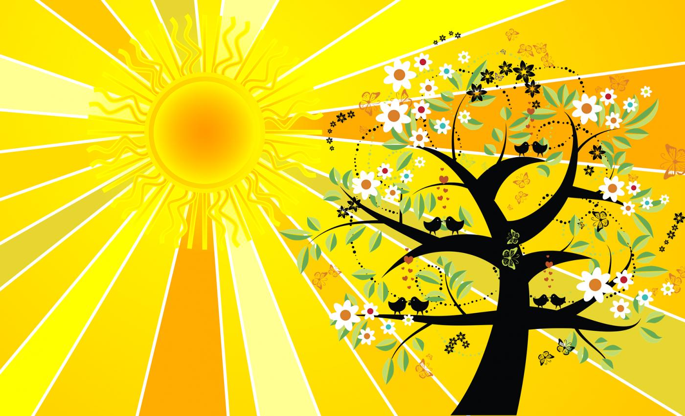 horoscop tarot solstitiu de vara