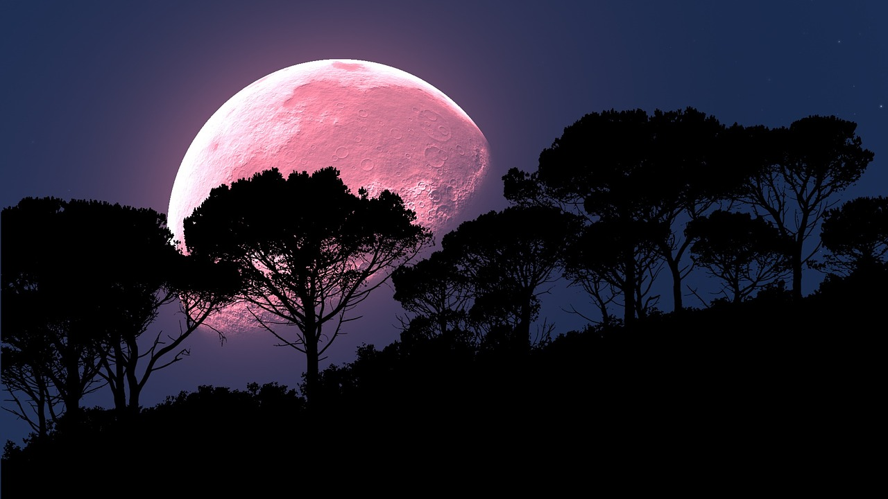 luna plina in sagetator 2019 - sfatulparintilor.ro - pixabay_com - moon-2238023_1280