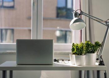 plante de apartament care purifica aerul - sfatulparinitlor.ro - pixabay_com - laptop-5582775_1920
