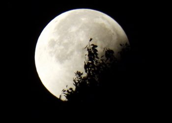 eclipsa partiala de Luna plina