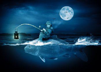 horoscop weekend - sfatulparintilor.ro - pixabay_com - frogfish-1693693