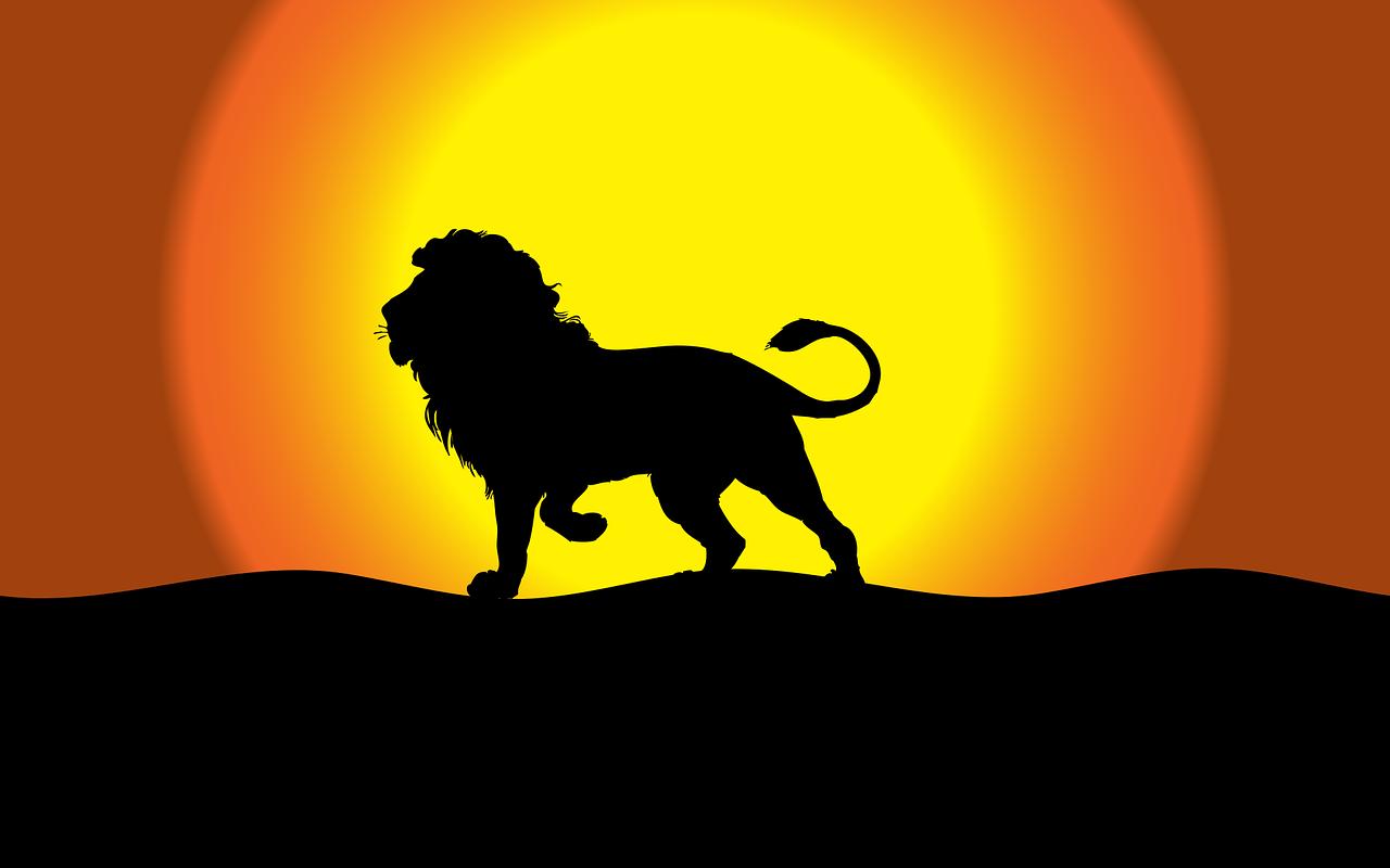 Soare in Leu 2021
