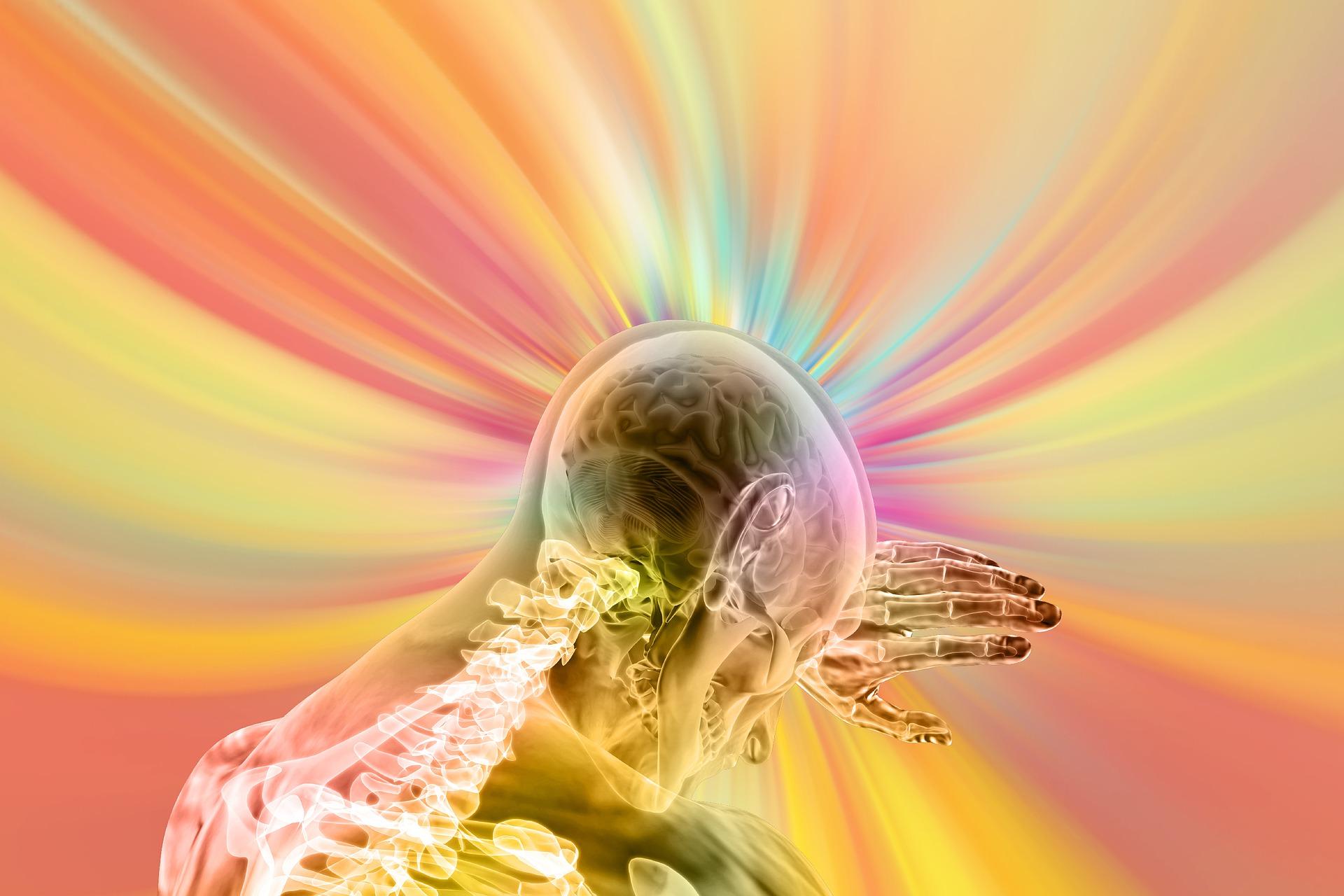 alimente care cresc nivelul de dopamina - sfatulparintilor.ro - pixabay_com - brain-4490831_1920