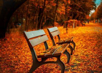 horoscop lunar octombrie - sfatulparintilor.ro - pixabay_COM - bench-560435_1920