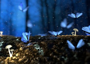 Horoscop SAPTAMANAL 14-20 octombrie 2019. Aduce Cosmosul energie buna si noroc?