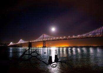 Horoscop WEEKEND 22-24 noiembrie 2019. Vin zile mai bune cu Luna in Balanta in noul sezon Sagetator? Ce zodii au iubire pe weekend?