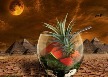 eclipsa de luna plina in capricorn - sfatulparintilor.ro - pixabay_com - melon-2428339_1920
