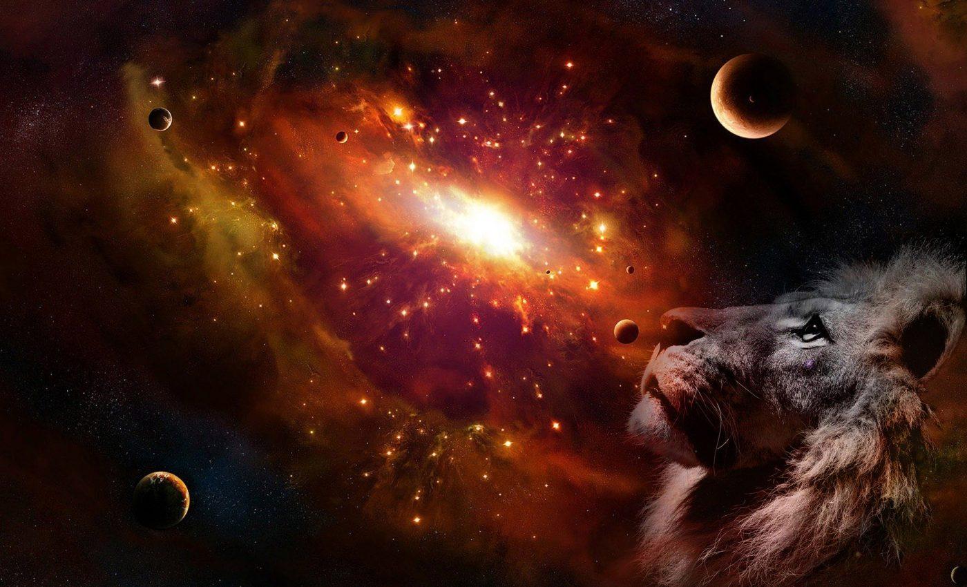 horoscop weekend - sfatulparintilor.ro - pixabay_com - lion-4985567_1920
